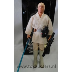 "Luke Skywalker 12"" loose with box"